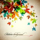 Herbst-Hintergrund   Fallende Blätter Stockfoto