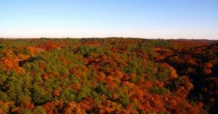 Herbst-Horizont Stockfoto