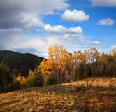 Herbst im Adirondacks Stockbilder