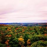 Herbst im Algonquin stockbilder