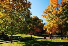 Herbst im Arboretum lizenzfreie stockfotos