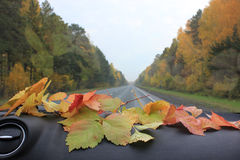 Herbst im Auto Lizenzfreies Stockbild