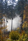 Herbst im Bayern Stockbild