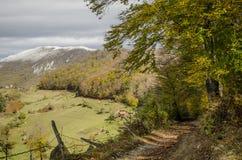 Herbst im Dorf lizenzfreies stockfoto