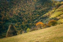 Herbst im Dorf Stockfotos