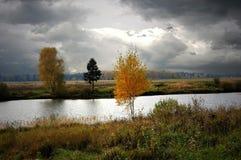 Herbst im Dorf von Zakharovo, Moskau-Region, Russland Weg fallen Blätter sind im Wasser Stockbild