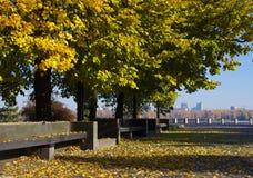 Herbst im Fluss Lizenzfreie Stockbilder