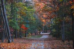 Herbst im Land Stockbild