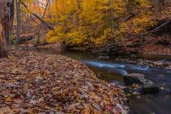 Herbst im Land Stockfotografie