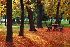 Herbst im Oktober Lizenzfreie Stockbilder