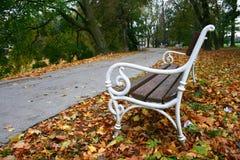 Herbst im Park Stockfotografie
