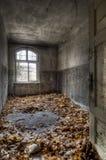 Herbst im Raum Stockfotografie
