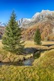 Herbst im Tal Lizenzfreie Stockbilder