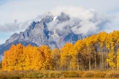 Herbst im Tetons Lizenzfreies Stockfoto