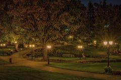 Herbst im zentralen allgemeinen Park in Riga nachts, Lettland Stockfotografie