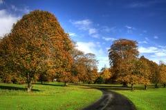Herbst in Irland Lizenzfreie Stockfotos