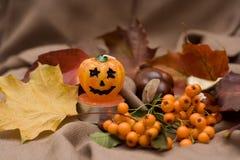 Herbst ist gekommen Stockfotografie