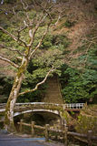 Herbst in Japan Stockfoto