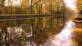 Herbst in Köln Lizenzfreies Stockbild