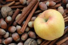 Herbst köstlich Lizenzfreie Stockfotos