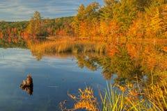 Herbst-Küstenlinie Lizenzfreie Stockbilder
