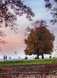 Herbst in Kalemegdan lizenzfreies stockbild