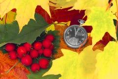 Herbst kam lizenzfreie stockfotografie
