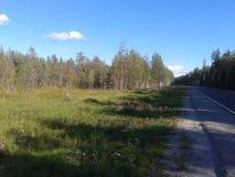 Herbst, Karelien, Jagd, Wald, Landschaft, der Ladogasee Stockfoto