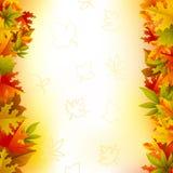 Herbst-Karte Stockfotos