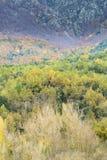 Herbst in Katalonien Spanien Lizenzfreies Stockfoto