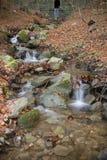 Herbst in Katalonien Spanien, in Montseny Lizenzfreie Stockfotos