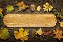Herbst klassifiziert auf dem Baum mit Blattrahmen für Wörter und insc Lizenzfreie Stockfotos
