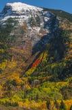 Herbst in Kolorado Lizenzfreies Stockbild