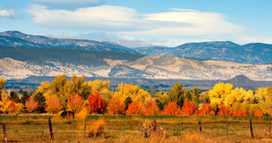 Herbst-Kolorado-vordere Reichweite Lizenzfreies Stockfoto