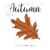 Herbst kommt Autumn Leaves Hand gezeichnete Abbildung Lizenzfreies Stockfoto
