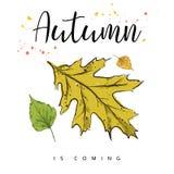Herbst kommt Autumn Leaves Hand gezeichnete Abbildung Stockbilder