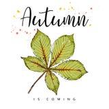 Herbst kommt Autumn Leaves Hand gezeichnete Abbildung Stockfotos