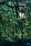Herbst-Lampen-Posten Lizenzfreies Stockfoto