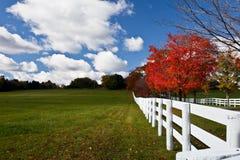 Herbst-Landschaft Stockfotos