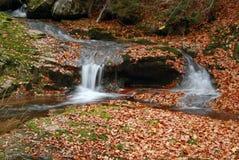 Herbst-Landschaft Stockfotografie