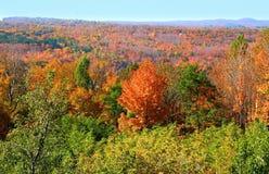 Herbst-Landschaft Stockbild