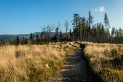 Herbst landschaft Stockbilder
