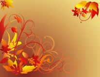 Herbst-Laub-Hintergrund Stockbild