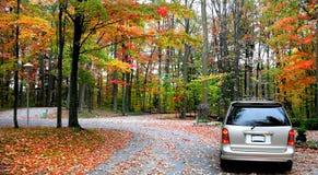 Herbst-Laufwerk Stockbilder