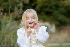 Herbst letzte Blume Lizenzfreies Stockfoto