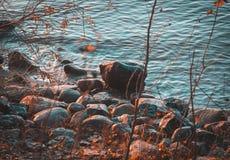 Herbst in Litauen lizenzfreie stockbilder