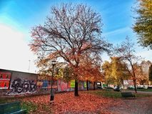 Herbst in Mailand Stockfoto