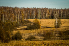 Herbst in Mittel-Russland Lizenzfreie Stockbilder
