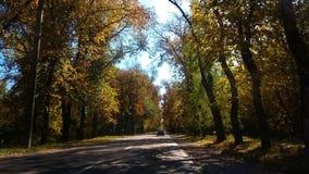 Herbst in Moldau lizenzfreie stockbilder