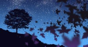 Herbst-Nacht Stockfotografie